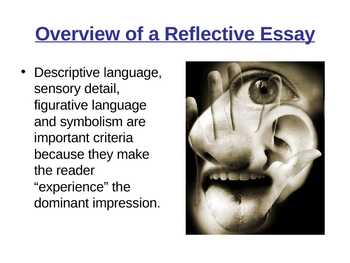 Reflective Essay Overview