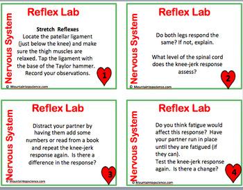 Reflex Lab Task Cards