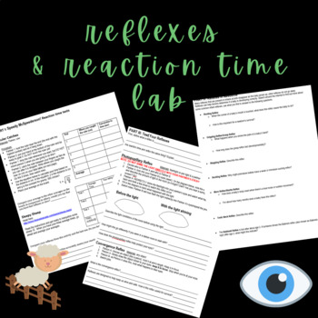 Reflexes Lab (partially online)