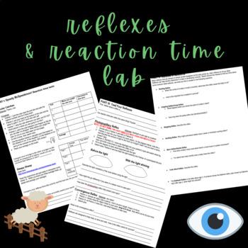 Reflexes Lab (partially online)