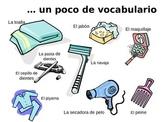 Reflexive Verbs/ Los verbos reflexivos Daily Routine