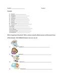 Reflexive Verbs (Spanish)