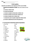 Reflexive Verbs_Daily Routine Writing Prompt and Rubric