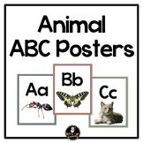 Reggio Emilia Inspired Animal ABC Posters