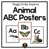 Reggio Emilia Inspired Animal ABC Posters