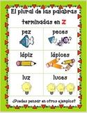 Spanish Spelling Rule (Regla de ortografía: Z cambia a C)