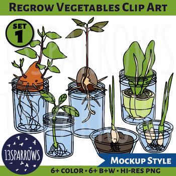 Regrow Vegetables Clip Art