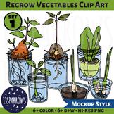 Regrow Vegetables Clip Art, Set 1