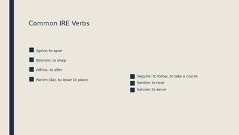 Regular IRE and ERE Verbs Practice