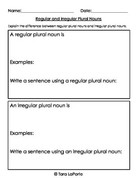 Regular & Irregular Plural Nouns L3.1b
