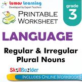 Regular & Irregular Plural Nouns Printable Worksheet, Grade 3