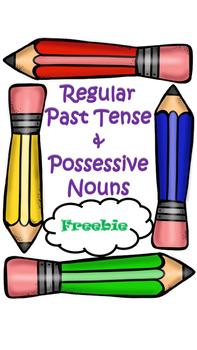 Regular Past Tense & Possessive Nouns FREEBIE!