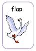 Regular Verb Cards (A-Z)