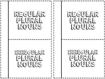 Regular and Irregular Plural Noun Interactive Notebook