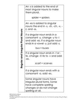 Regular and Irregular Plural Nouns Interactive Notebook
