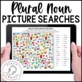Regular and Irregular Plural Nouns Picture Searches  Print