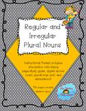 Regular and Irregular Plural Nouns Study Guide and Quiz