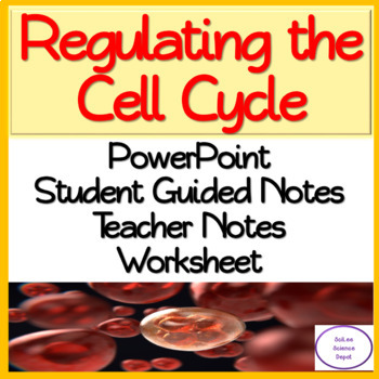 Regulating the Cell Cycle PowerPoint, Guided Notes, and Worksheet.