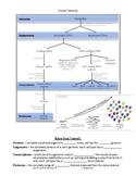 Regulation of Gene Expression Notes Page w/ Numerous Visual Aides Included