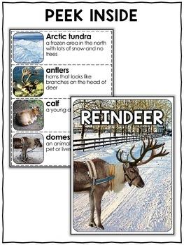 Reindeer Activities Nonfiction Unit