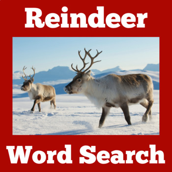 Reindeer Activity   Reindeer Christmas   Christmas Word Search