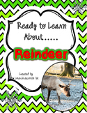 Reindeer Close Reading