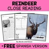 Reindeer Close Reading Passage Activities