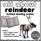 Reindeer Instant Comprehension Reading Lesson