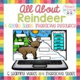 Reindeer Activities