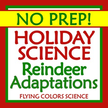 Reindeer Adaptations & Homologous Structures Holiday Christmas Science Activity
