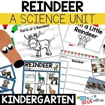 Reindeer Science: An Animal Study
