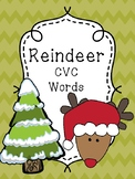 Reindeer CVC