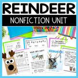 Reindeer Chit Chat Messages Close Reading and More