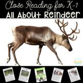 Reindeer for Kindergarten and First Grade | Close Reading