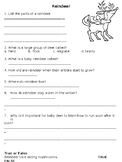 Reindeer Comprehension Worksheet