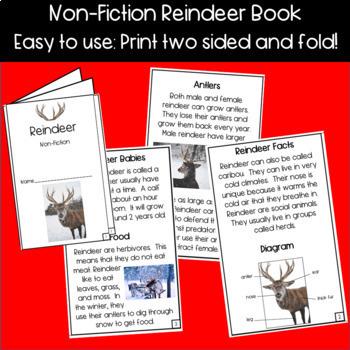 Reindeer Craft, Reindeer Non-Fiction Book, Writing Prompts!