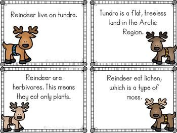 Reindeer Fact Cards