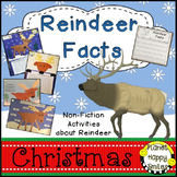 Reindeer Facts Activities Non-fiction Pack