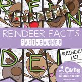Reindeer Facts Banner {Bunting, Garland, Pennant Display}