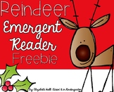 Reindeer Facts *FREEBIE* Emergent Reader {for little learners}