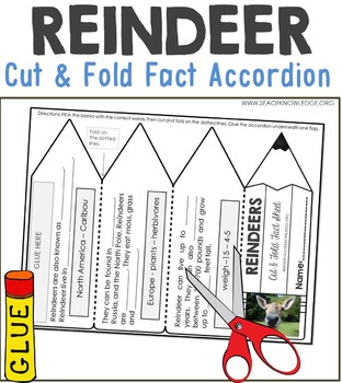 Reindeer Facts Foldable Accordion