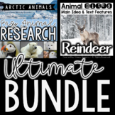 Reindeer Informational Article and Arctic Animal Research BUNDLE