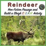 Christmas Reindeer Nonfiction Text and Build a Sleigh STEM Challenge