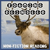Nonfiction Reading Passage | Reindeer | Comprehension Activities