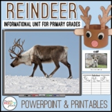 Reindeer Unit with PowerPoint and Printables