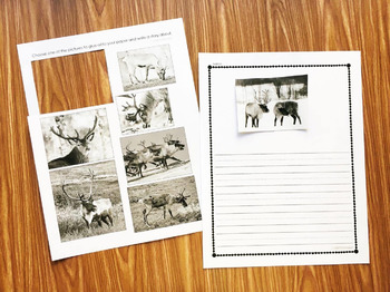 Reindeer Nonfiction Book with Activities
