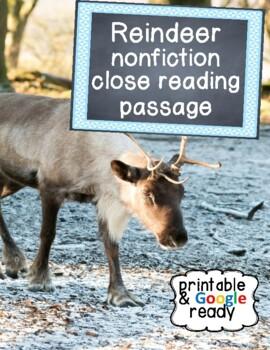 Reindeer Nonfiction Close Reading Passage