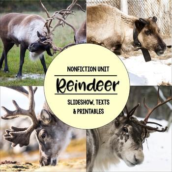 Reindeer Nonfiction Close Reading & Visual Vocabulary Unit