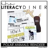 Reindeer Nonfiction - Kindergarten Interactive Read Aloud