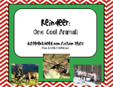 Reindeer: One Cool Animal - differentiated non-fiction stu